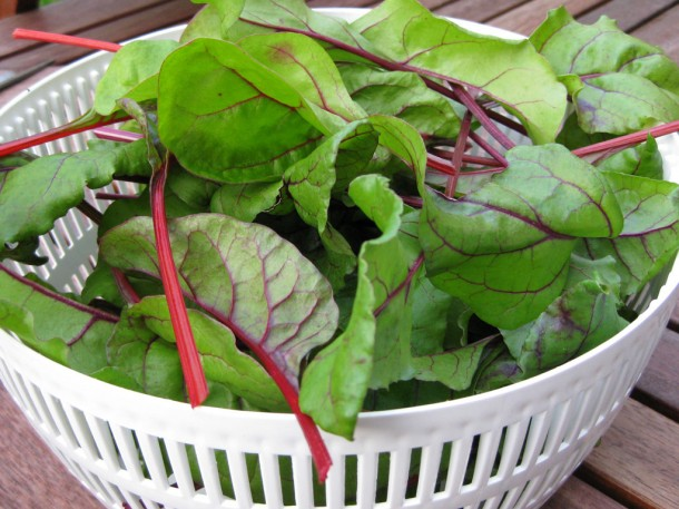 beetroot and chard leaves in a bowl