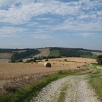 The Joy of Walking the South Downs Way