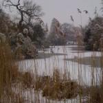 The frozen lake in Dulwich Park