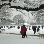 Excited crowds in snowy Dulwich Park