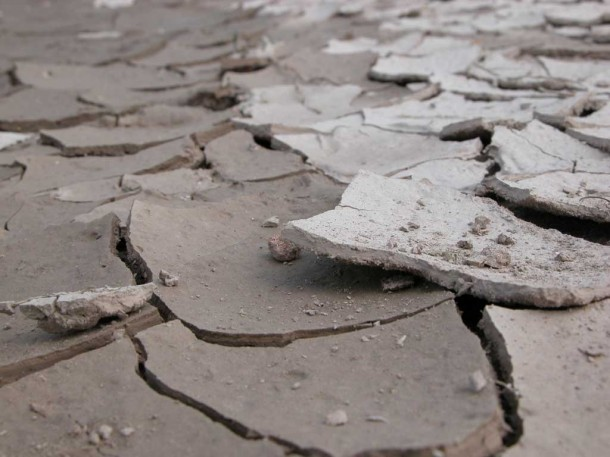 dry cracked mud like dry skin associated with atopic eczema