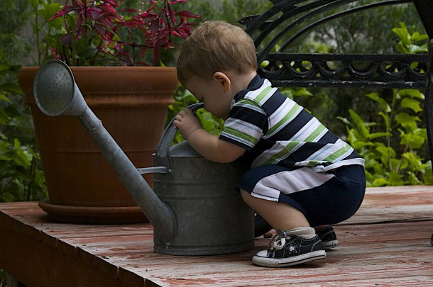 a curious toddler explores a watering can